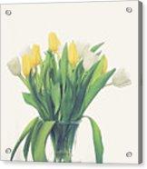 Vase Of Tulips Acrylic Print