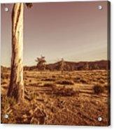 Vast Pastoral Australian Countryside  Acrylic Print