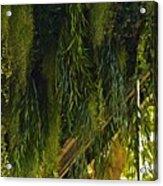 Vegetal Roof Acrylic Print