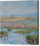 Veldriff Marshes 2011 Acrylic Print