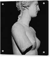 Venus De Milo Acrylic Print by Greek School