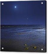 Venus Shines Brightly Acrylic Print