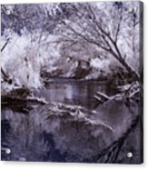 Verde Spring Reflections Acrylic Print