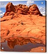 Vermilion Cliffs Reflections Acrylic Print