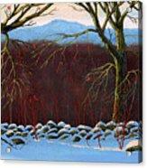 Vermont Stone Wall Acrylic Print
