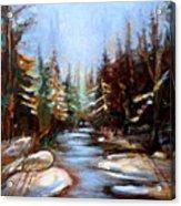 Vermont Stream Acrylic Print