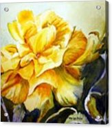 Vernon's Rose Acrylic Print