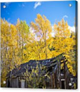 Vertical Shot Of Meagher's Cabin Acrylic Print