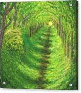 Vertical Tree Tunnel Acrylic Print
