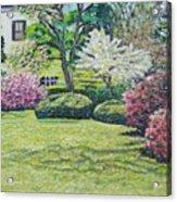 Veterans Park Blossoms Acrylic Print