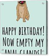Veterinarian Birthday Card - Veterinary Greeting Card - Empty My Anal Glands - Pug Birthday Card Acrylic Print