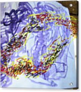 Viavizaviz Acrylic Print