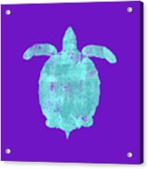 Vibrant Blue Sea Turtle Beach House Coastal Art Acrylic Print