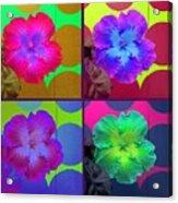 Vibrant Flower Series 2 Acrylic Print by Jen White