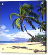 Vibrant Green Palms Acrylic Print