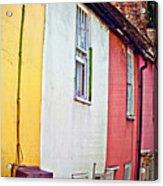 Vibrant Living Acrylic Print