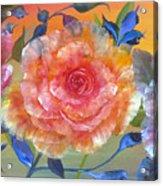 Vibrant Roses Acrylic Print