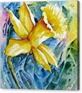 Vibrant Spring Acrylic Print