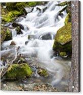 Vibrant Waterfall Landscape Acrylic Print