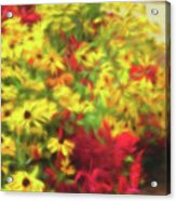 Vibrant Yellow Daisies And Red Garden Flowers Acrylic Print