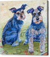 Vickie's Pups Acrylic Print