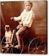 Victorian Boy With Pug Dog And Tricycle Circa 1900 Acrylic Print