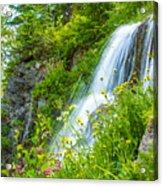 Vidae Falls, Oregon Acrylic Print
