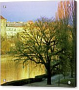 Vienna 1 Acrylic Print
