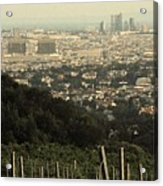 Vienna From The Vineyard Acrylic Print