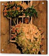 View from a Roman Window Acrylic Print