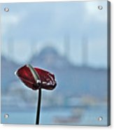 View From Istanbul Modern Acrylic Print