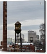 View From Libby Hill Acrylic Print