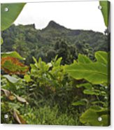 View From Likeke Acrylic Print