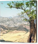 View From Ronda Spain Acrylic Print