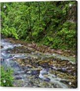 View In Vintgar Gorge - Slovenia Acrylic Print