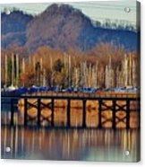 View Of A Bridge Acrylic Print