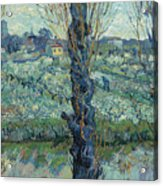 View Of Arles, Flowering Orchards Acrylic Print