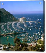 View Of Avalon Harbor Acrylic Print by Cliff Wassmann