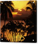 View Of Fiji Acrylic Print