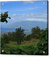 View Of Mauna Kahalewai West Maui From Keokea On The Western Slopes Of Haleakala Maui Hawaii Acrylic Print