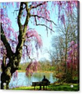 View Of The Lake In Spring Acrylic Print