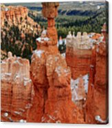 View Of Thor's Hammer In Bryce Canyon Acrylic Print by Pierre Leclerc Photography