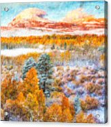 View Of Yosemite National Park Acrylic Print