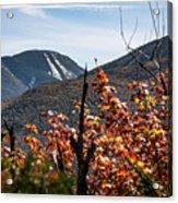 View On The Way Up Mt. Jo, Adirondacks Acrylic Print