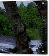 Viewing Tahquamenon Lower Falls Upper Peninsula Michigan Panorama 02 Acrylic Print