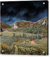 Vigne Nella Notte Acrylic Print