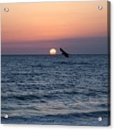 Vilano Beach At Sunrise Acrylic Print
