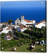 Village In The Azores Acrylic Print