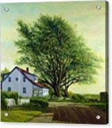 Village Road Orient  16x20 Acrylic Print
