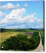 Village View Acrylic Print